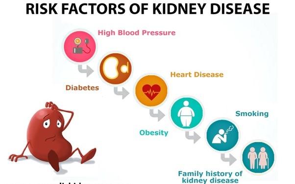Risk-Factors-of-Kidney-Disease-1.jpg