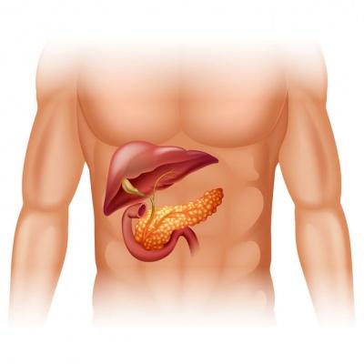 cancer_pancreas44381811_M.jpg