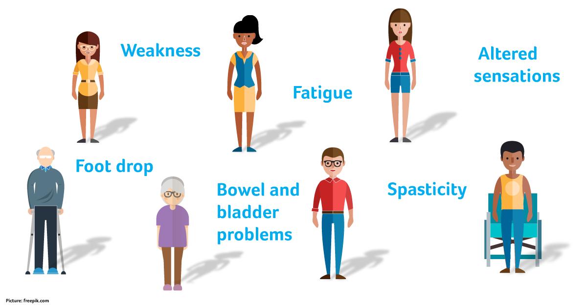 MS-symptoms.png