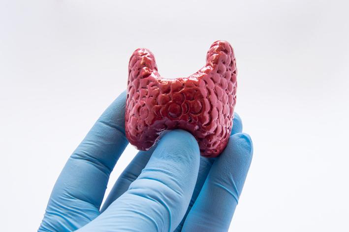 Thyroid+Surgery+Endochrine+System.jpg