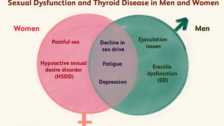 sexual-dysfunction-thyroid-disease-3231814_final-ae70a4a329324fa680e6aec1df6f16f2.png